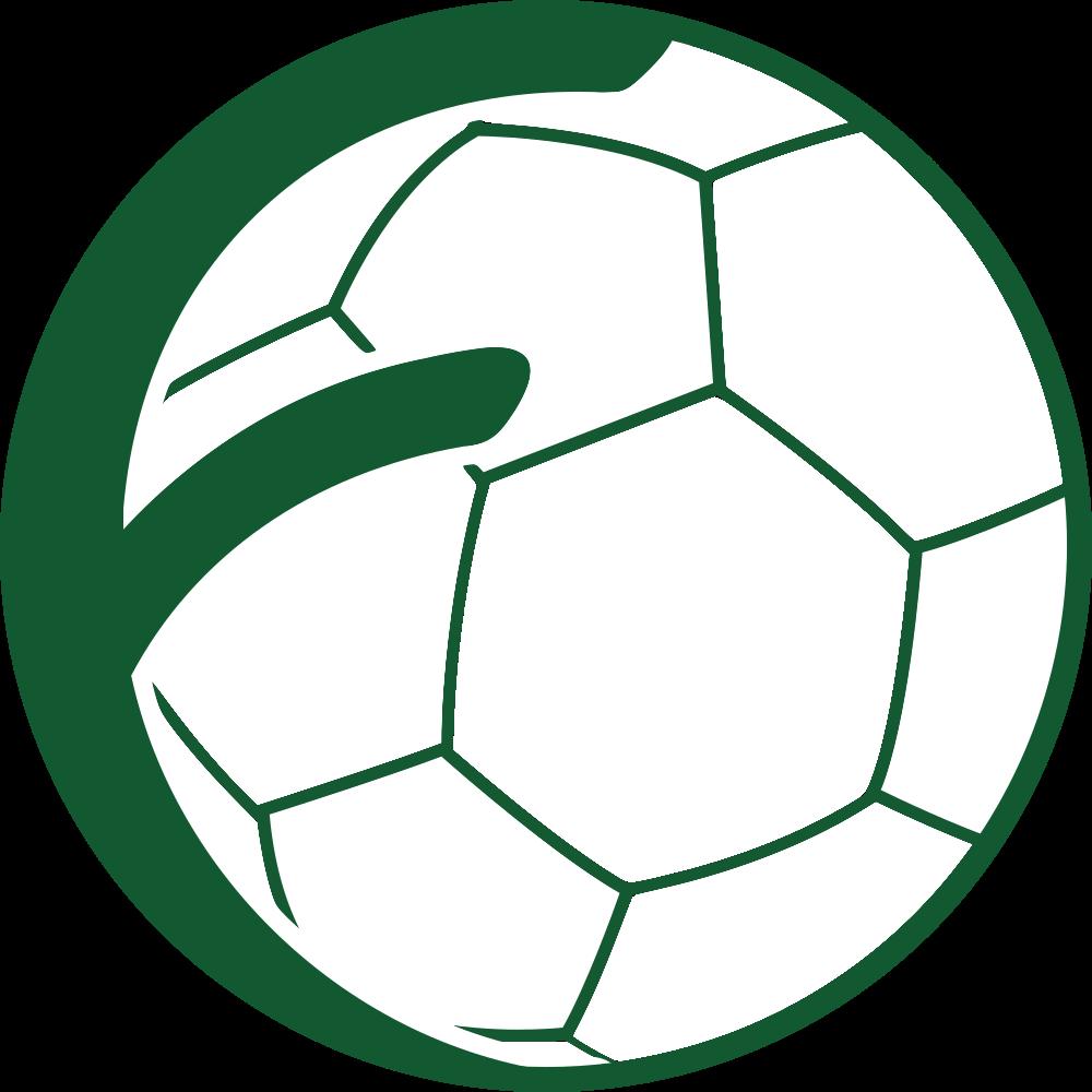Footbank ball